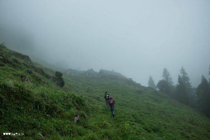 Die Alp im Nebel