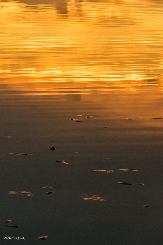 Gold steigt aus dem Wasser